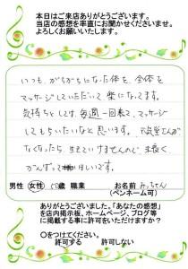 voice_025